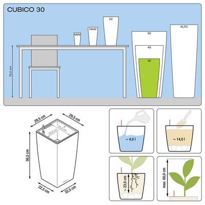 Замиокулькас Cubico 130/30